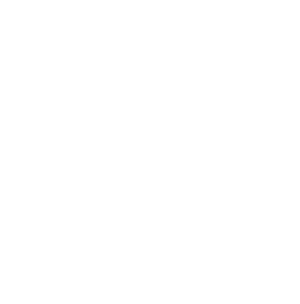 Florida Document Imaging | Lit & More